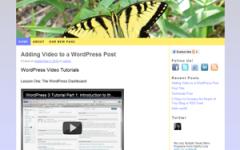 Critters WordPress Theme
